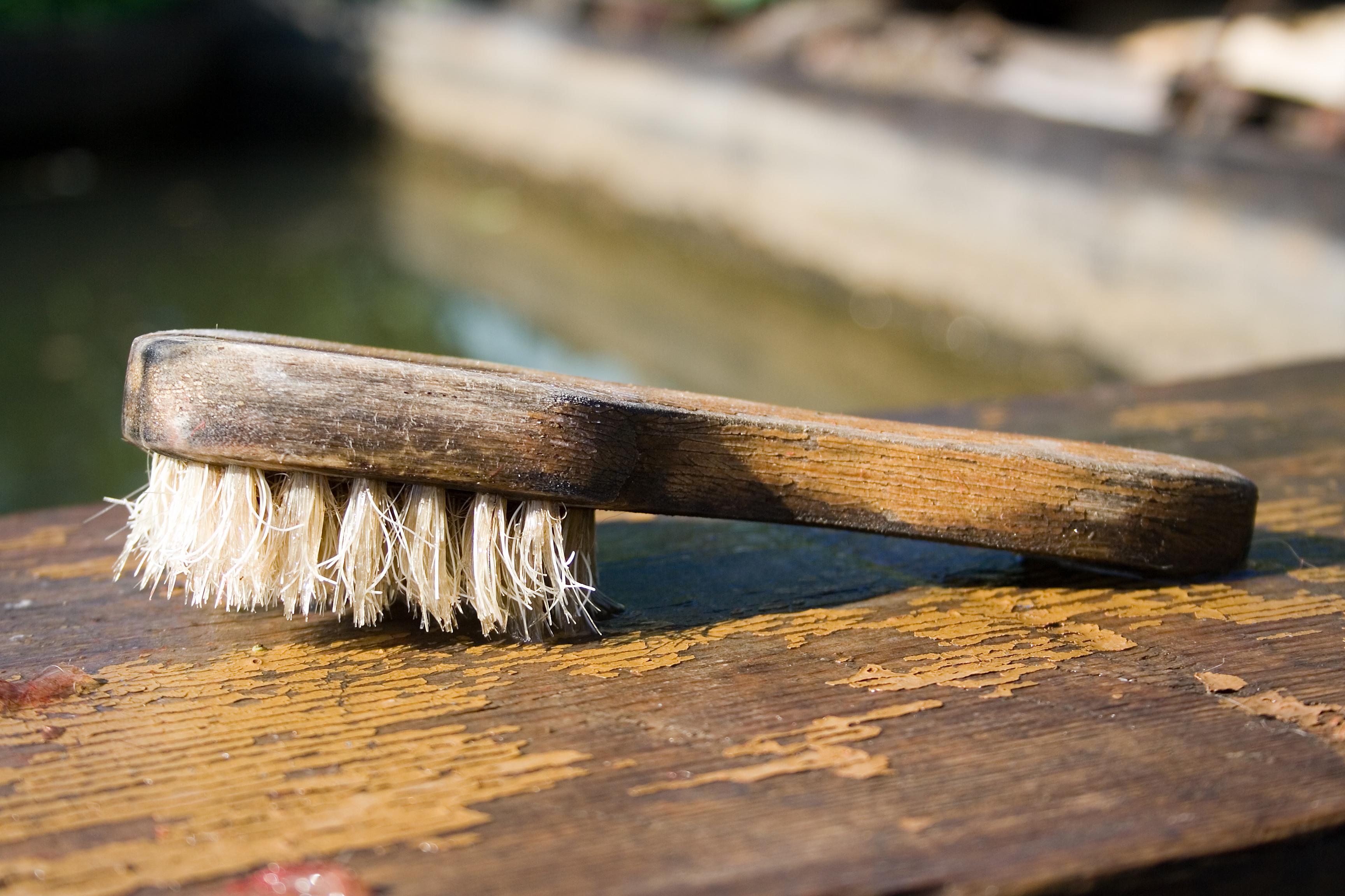 brush-1422878