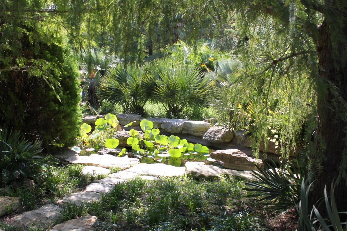 austin texas botanical gardens